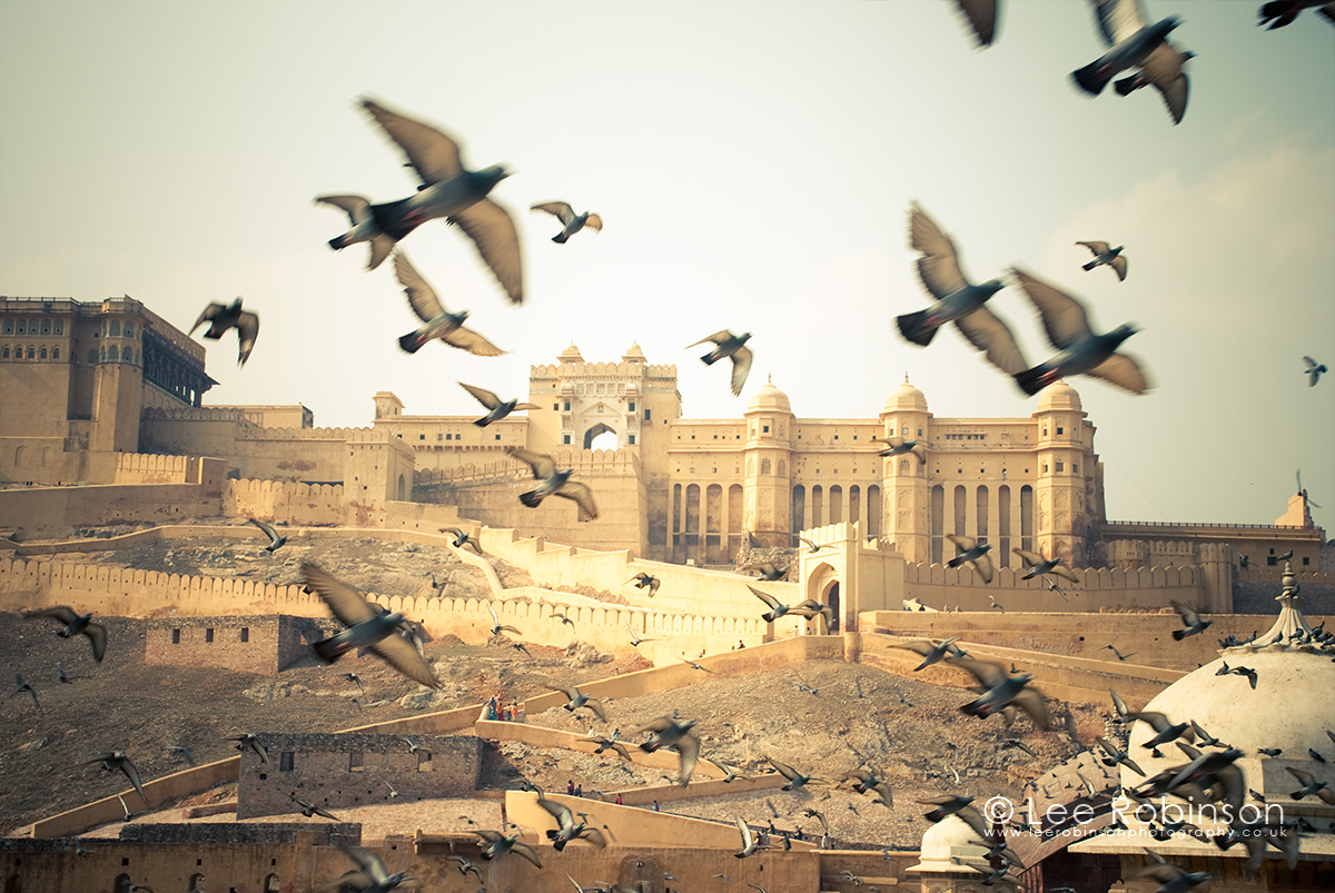 The Amber Fort, near Jaipur, Rajasthan state, India, lee robinson photography