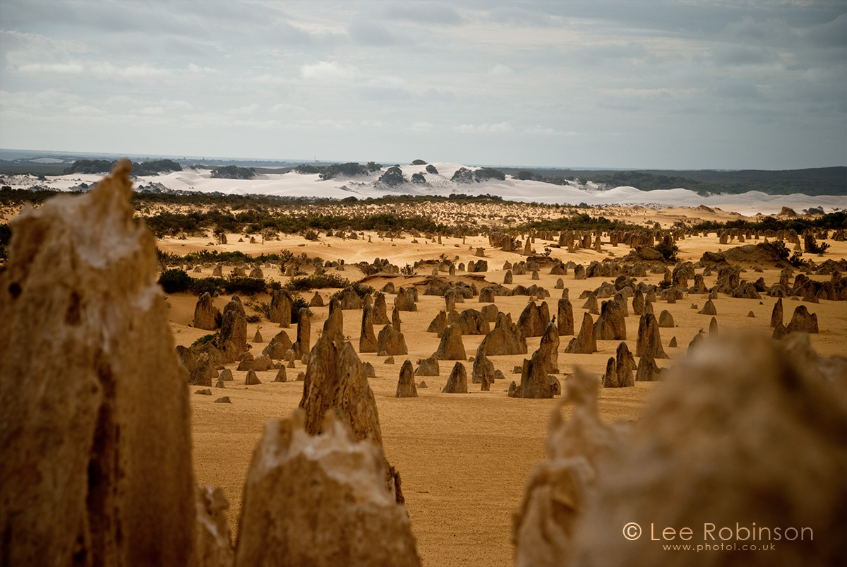 by lee robinson. www.photol.co.uk, Photograph of The Pinnacles are limestone formations contained within Nambung National Park, near the town of Cervantes, Western Australia.